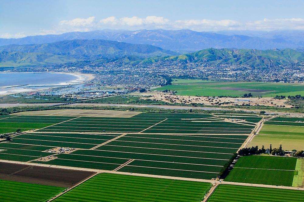 Aerial view of Oxnard farm fields in spbague with Ventura City and Pacific Ocean in background Ventura County CA Poster Print by Panoramic Images (36 x 24)