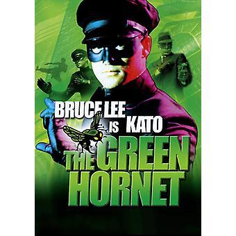 The Green Hornet Movie Poster (11 x 17)