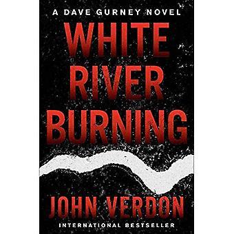 White River Burning: A Dave Gurney Novel: Book 6 (A Dave Gurney Novel)