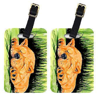Carolines Treasures  SS8526BT Pair of 2 Chow Chow Luggage Tags