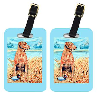 Carolines Treasures  7112BT Pair of 2 Chesapeake Bay Retriever Luggage Tags