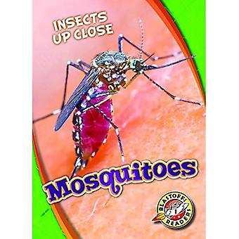 Mosquitoes (Insects Up Close)