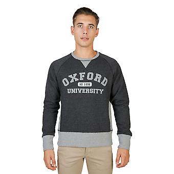 Oxford University Pullover Männer grau
