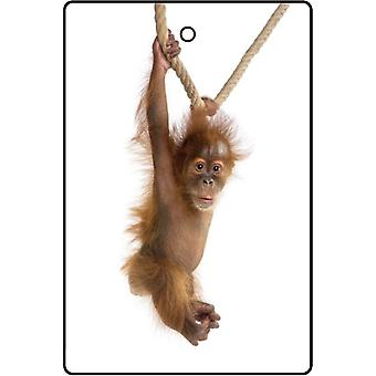 Swinging Baby Orangutan Car Air Freshener