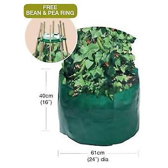 Bean & Pea Bag with Free Bean & Pea Ring Polyethylene Green Storage
