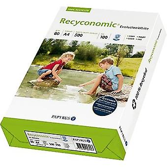 Recycled printer paper Papyrus Recyconomic Evolution 88054052