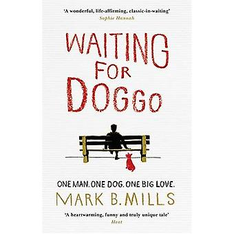 Waiting for Doggo by Mark Mills - 9781472218339 Book
