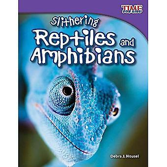 Repitles slang en amfibieën (Time for Kids non-fictie lezers: niveau 3.3)