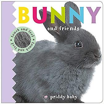 Bunny and Friends Touch and Feel (Baby Touch and Feel) [Board book]