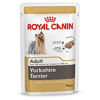Royal Canin Yorkshire Terrier Adult 85gr. (Cani , Cibo per cani , Cibo umido)