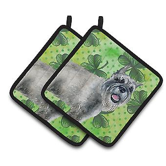 Carolines Treasures  BB9836PTHD Schnauzer St Patrick's Pair of Pot Holders