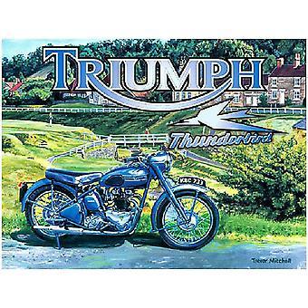 Triunfo Thunderbird acero firmar 400 Mm X 300 Mm