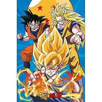 Dragon Ball Z Poster Gokus 177