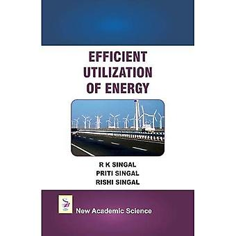 Efficient Utilization of Energy
