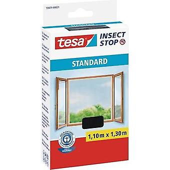 Fly screen tesa Insect Stop Standard (L x W) 1100 mm x 1300 mm Anthracite 1 pc(s)