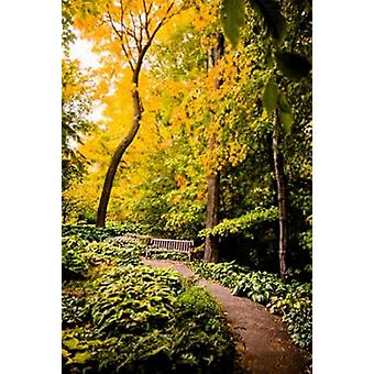 Autumn Pathway II Poster Print by Beth Wold