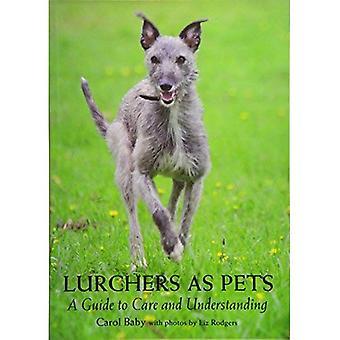 Lurchers como mascotas: una guía para la atención y la comprensión