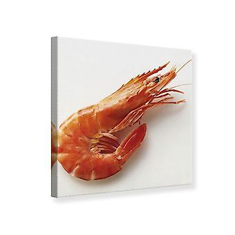 Tela de impressão do camarão tigre