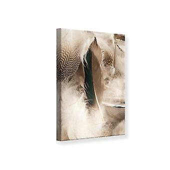 Canvas Print Feathers