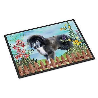 Newfoundland Puppy Spring Indoor or Outdoor Mat 18x27