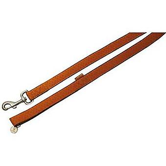 Nayeco MacLeather dog leash brown M (Dogs , Collars, Leads and Harnesses , Leads)