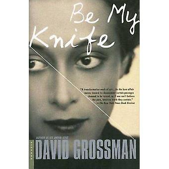 Be My Knife by David Grossman - 9780312421472 Book