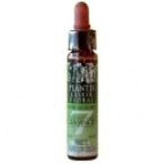 Artesania Agricola Plantis Solution 10Ml Fatigue N ° 7.