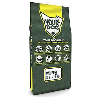 Yourdog Whippet Pup 12 Kg