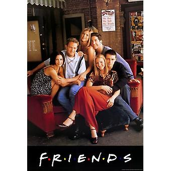 Friends (TV) Movie Poster (11 x 17)