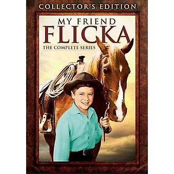 My Friend Flicka: The Complete Series [DVD] USA import