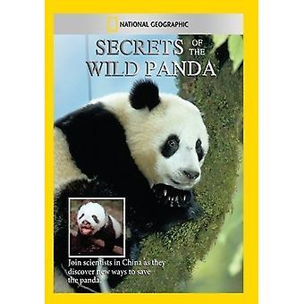 Geheimnisse der wilden Panda [DVD] USA importieren