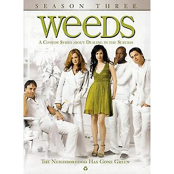 Weeds - Weeds: Stagione 3 [DVD] Stati Uniti importare