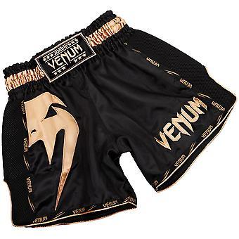 Venum Giant leichte Muay Thai Shorts - Schwarz/Gold
