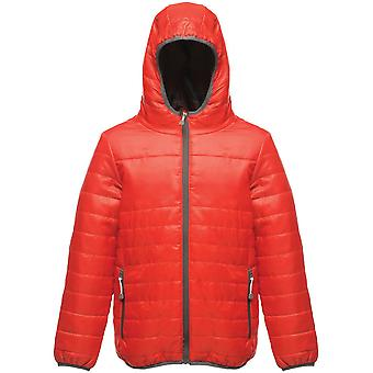 Regatta Boys & Girls Stormforce Lightweight Durable Padded Jacket Coat