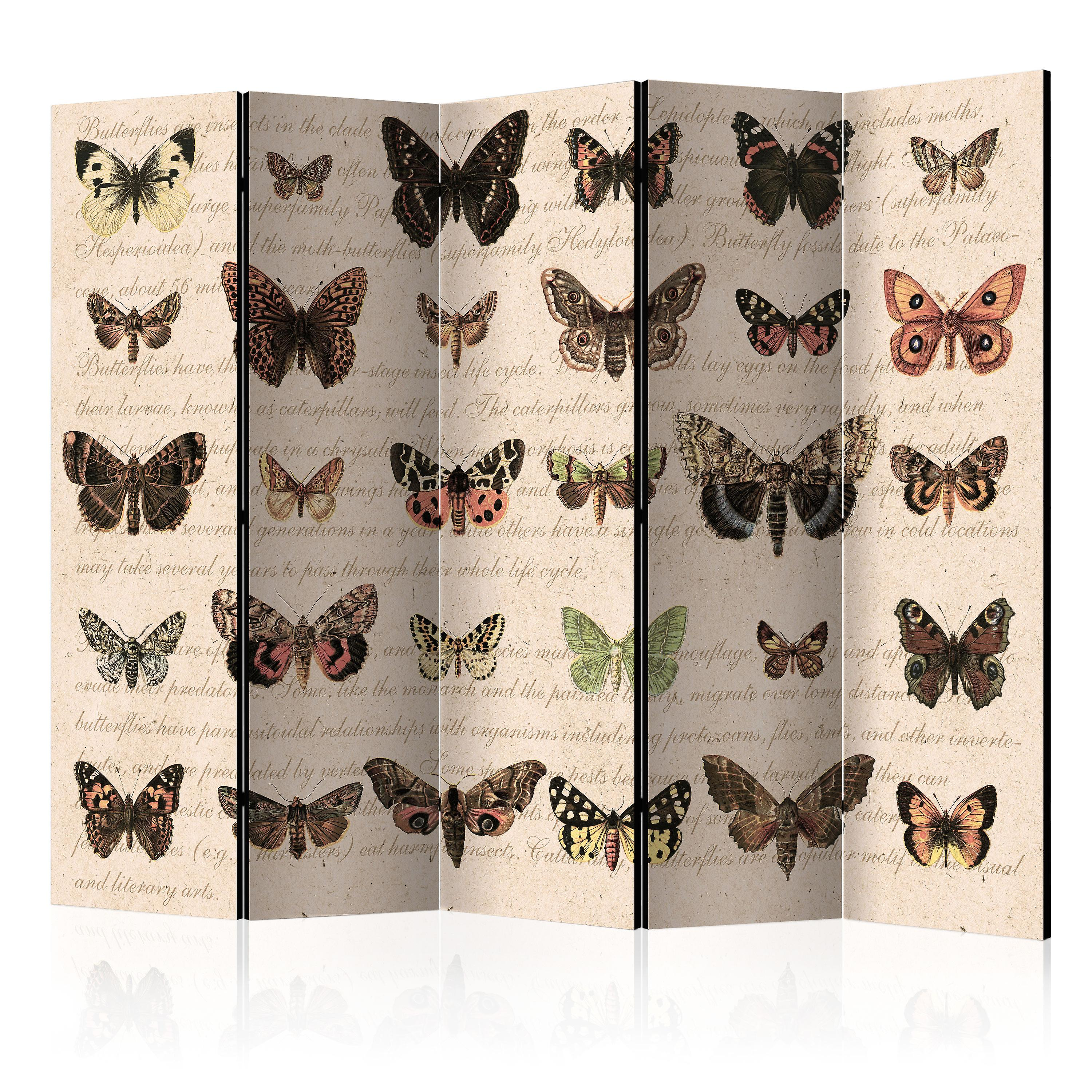 Paravent 5 volets - Retro Style  Butterflies II [Room Dividers]