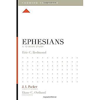 Efésios: Um estudo de 12 semanas (sabendo que a Bíblia)