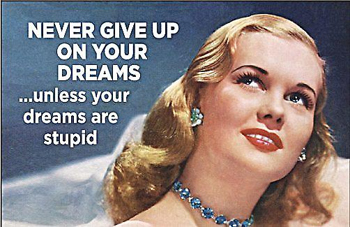 Never Give Up On Your Dreams funny fridge magnet  (ep)