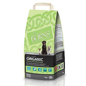 Brænder organisk voksen & Senior komplet fisk & brune ris 2kg
