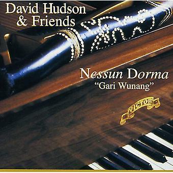 David Hudson - Nessun Dorma