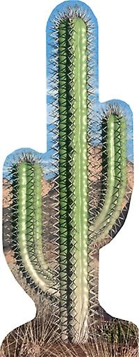 Cactus (Western Themed) - Lifesize Cardboard Cutout / Standee