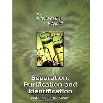 Séparation, de Purification et d'Identification (le monde moléculaire)