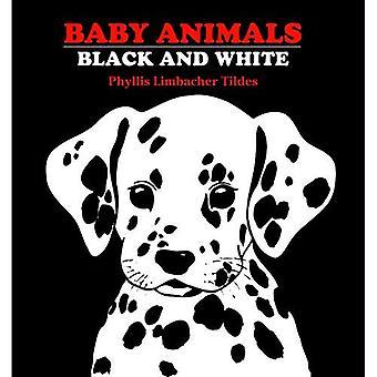 Bébé animaux noir et blanc