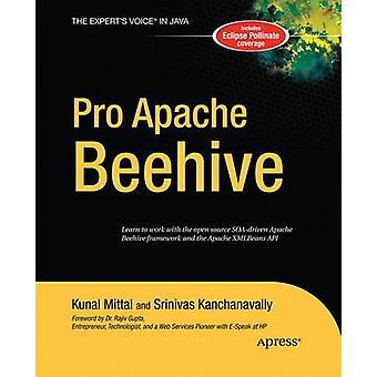 Pro Apache Beehive by Kanchanavally & Srinivas
