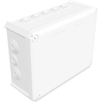 OBO Bettermann 2007554 Anschlussdose (L x b x H) 240 x 190 x 95 mm reinem weiß (RAL 9010) IP66
