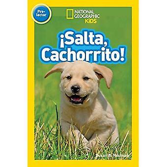 Salta, Cachorrito (National Geographic Kids: Pre-Leser)