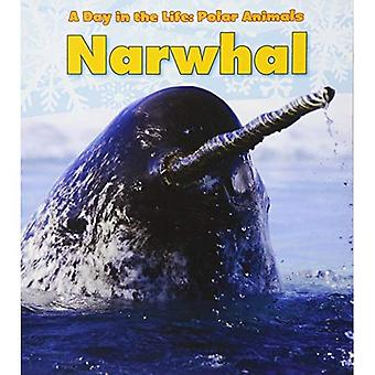 Narwhal (Day in the Life: Polar Animals)