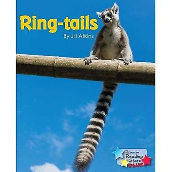 Ring-tails (Reading Stars Plus)
