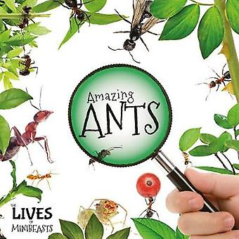 Amazing Ants by Holly Duhig - 9781786371874 Book