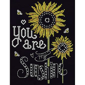 You Are My Sunshine gezählt Cross Stitch Kit-8