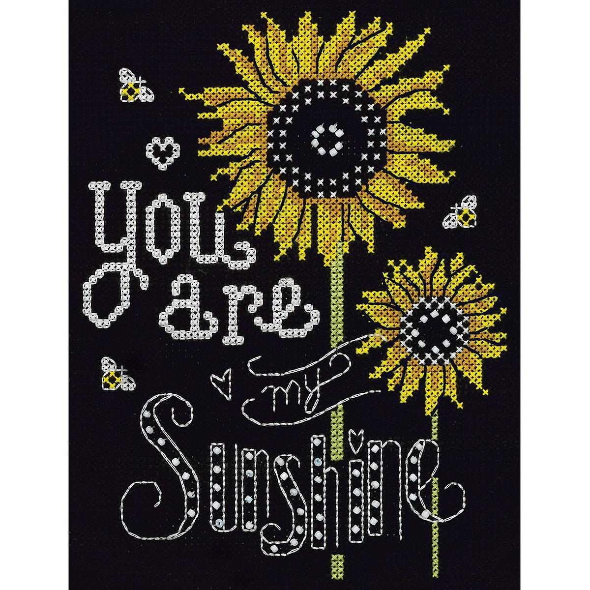 You Are My Sunshine Counted Cross Stitch Kit-8